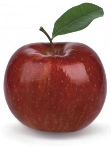 Basisbild Apfel